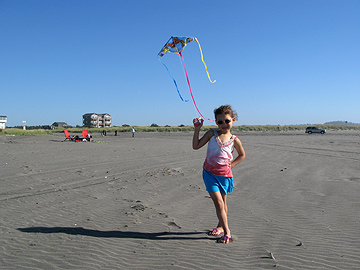 Kites are fun!
